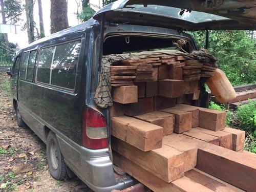 wood171119-(1)