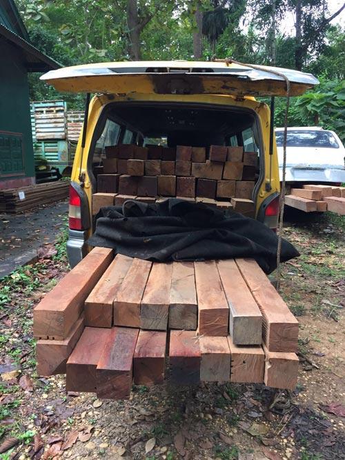 wood171119-(3)