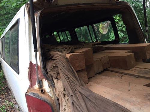 wood171119-(5)
